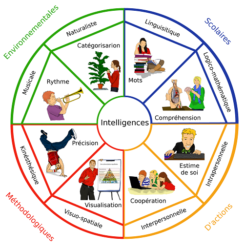 IMMandala-intelligences-multiples-1-1003x1024
